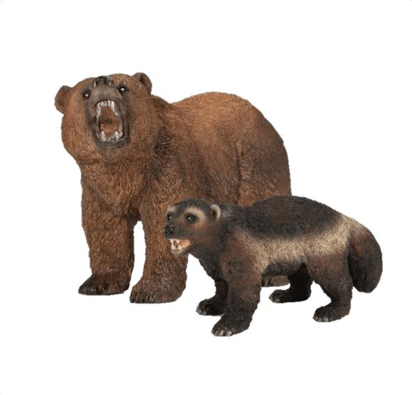 דובים כועסים