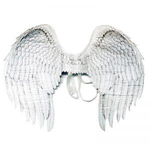 כנפי מלאך – פורים