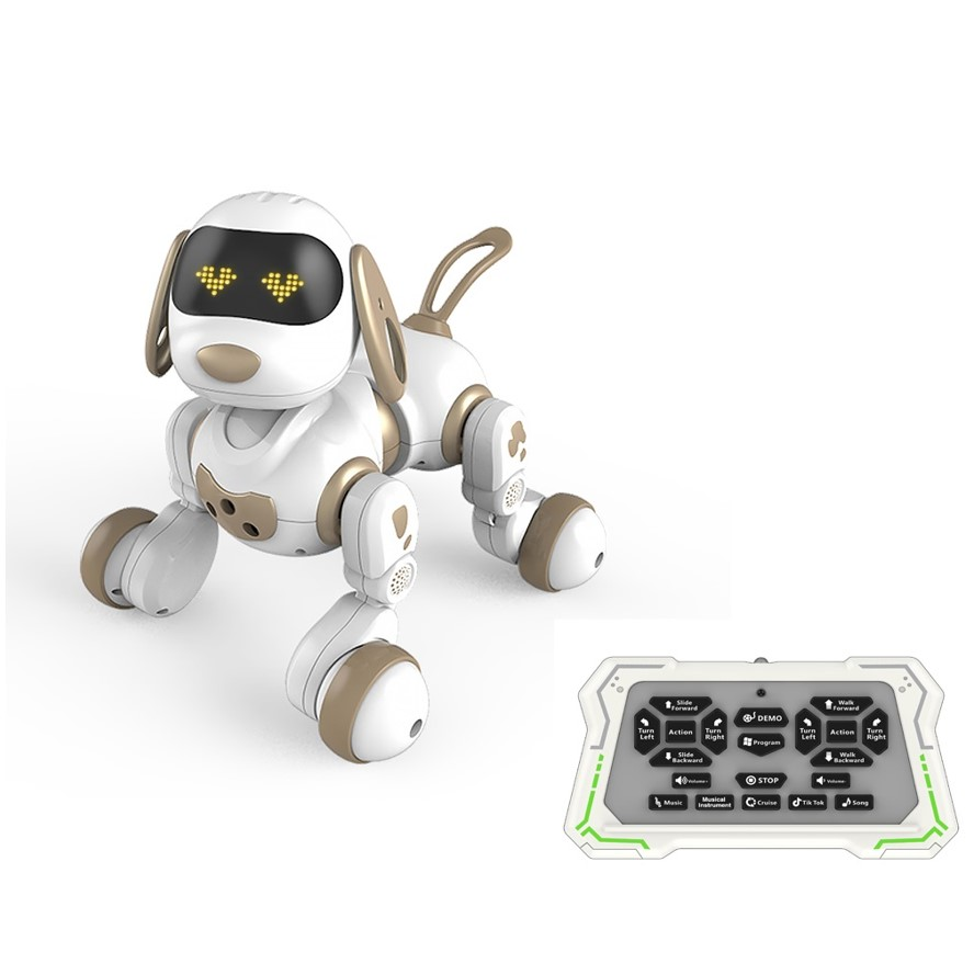 כלב – רובוט עם שלט